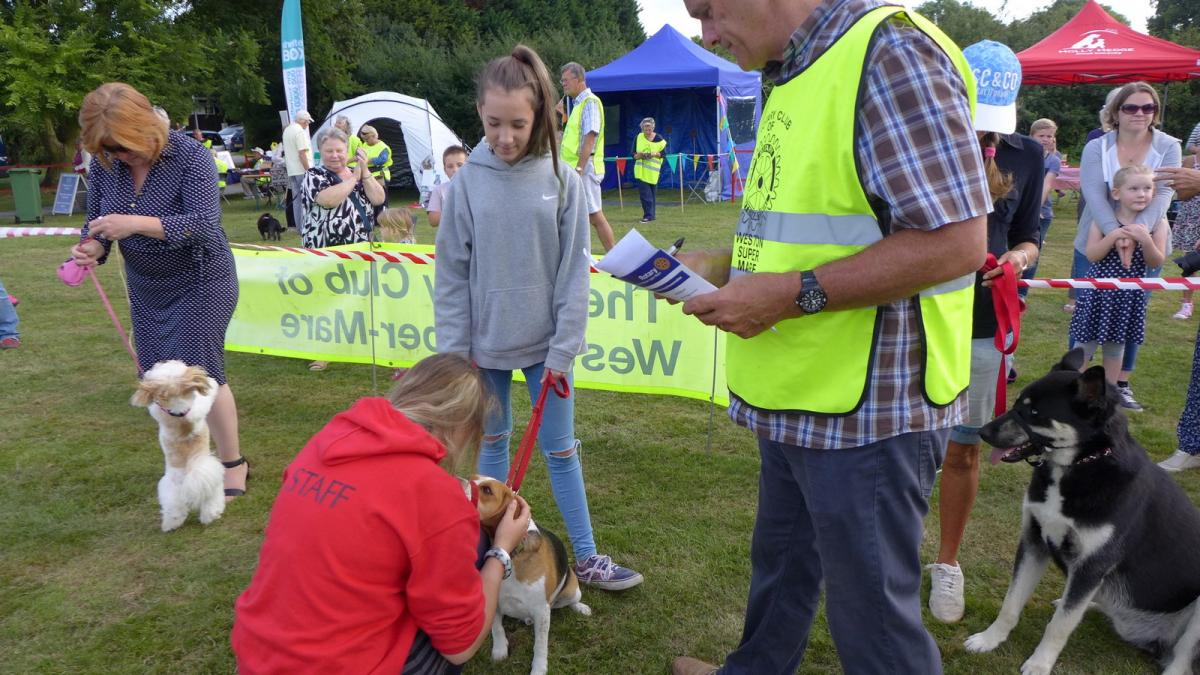 Weston Rotary  Club - Who are we?  - In 2016 we had our first Charity Dog Day. We need a venue to make it an annual event