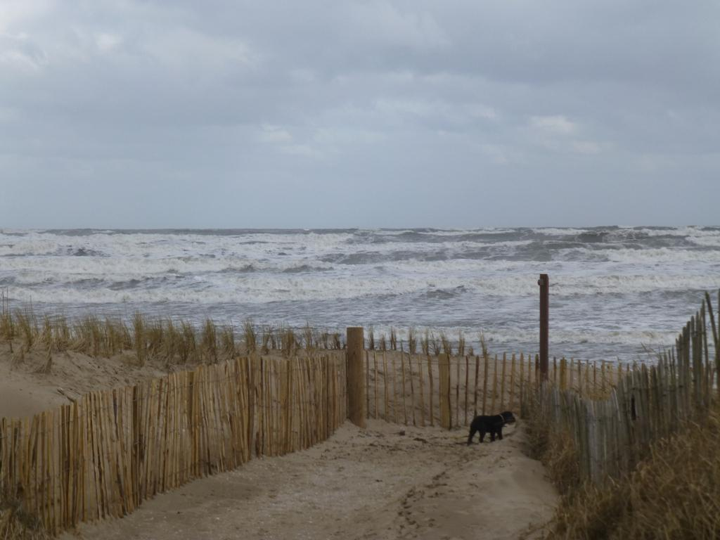 Climate Change - Beach erosion at West Sands