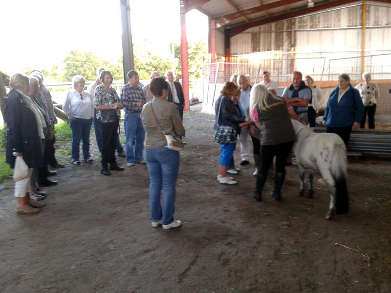 Outside Visit - Equine Pathways - Carole Taylor taking Questions