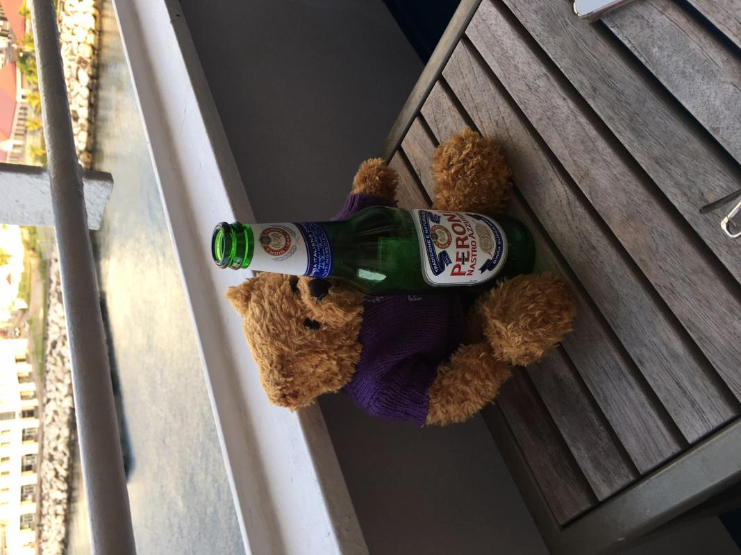 Rotary Polio Bear  - Pauline enjoying a cool beer