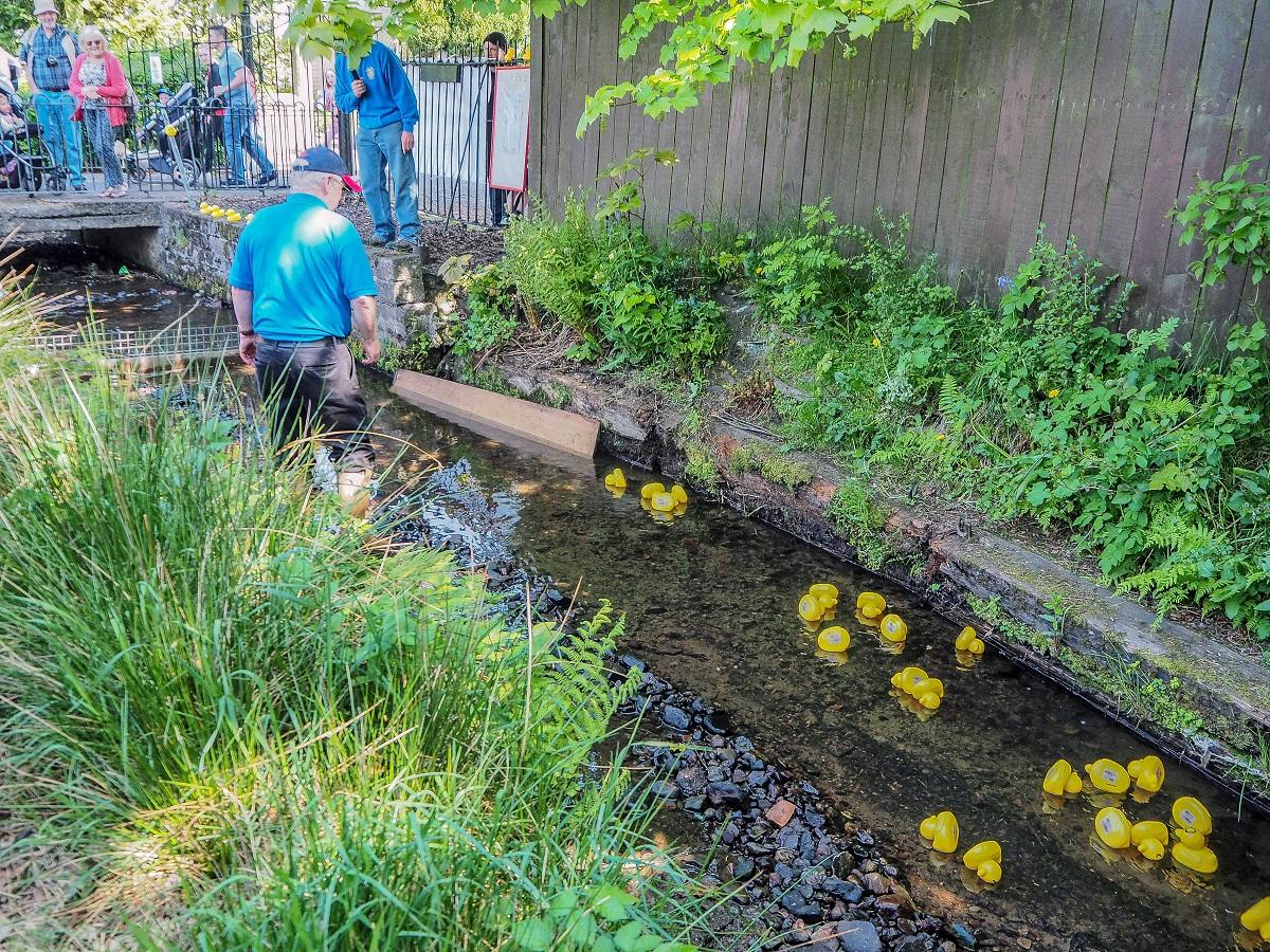 Penicuik in the Park 26th May 2018 - Another Duck Race in progress