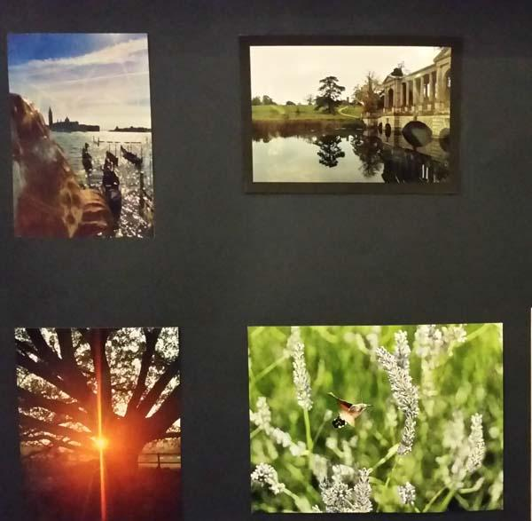 Rotary Young Photographer Competition - Some of the winning entries