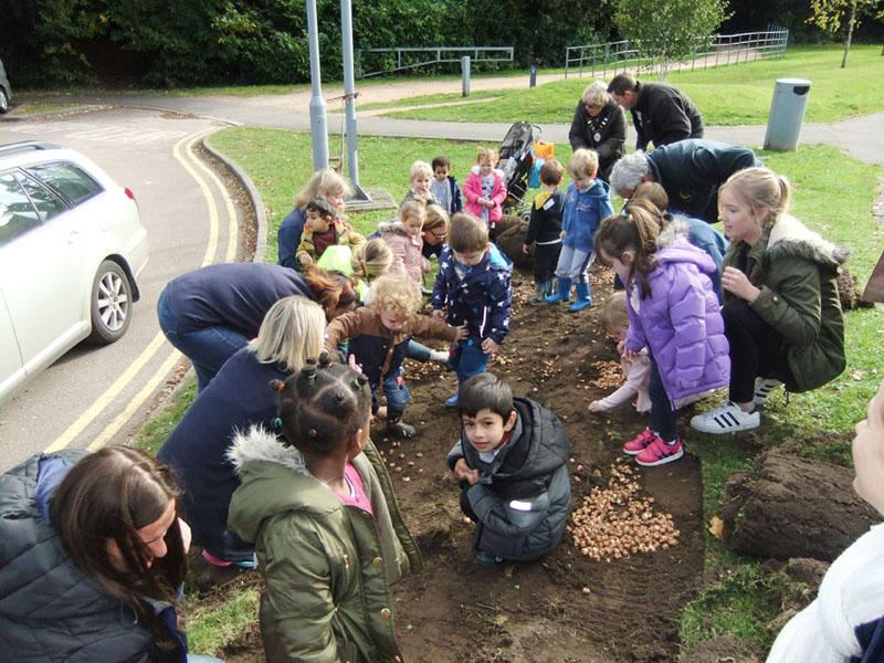 Growing Together to End Polio Now - Purple4Polio Crocus planting with Birch Hill Pre School at South Hill