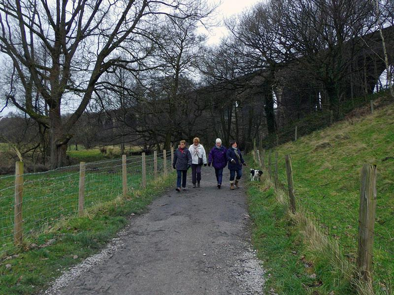 New Year Walk - Dog walkers bringing up the rear