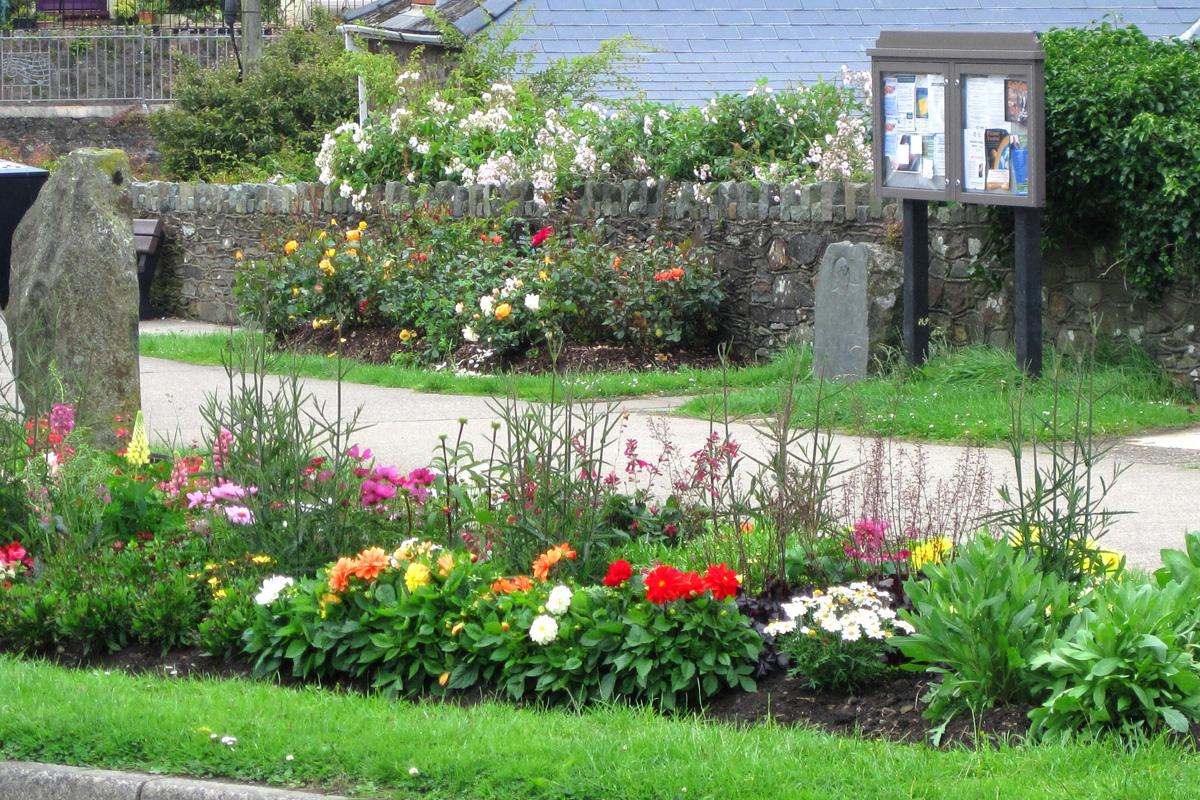 Gardening in Fishguard - Rotary Centenary Roses were planted here in 2005