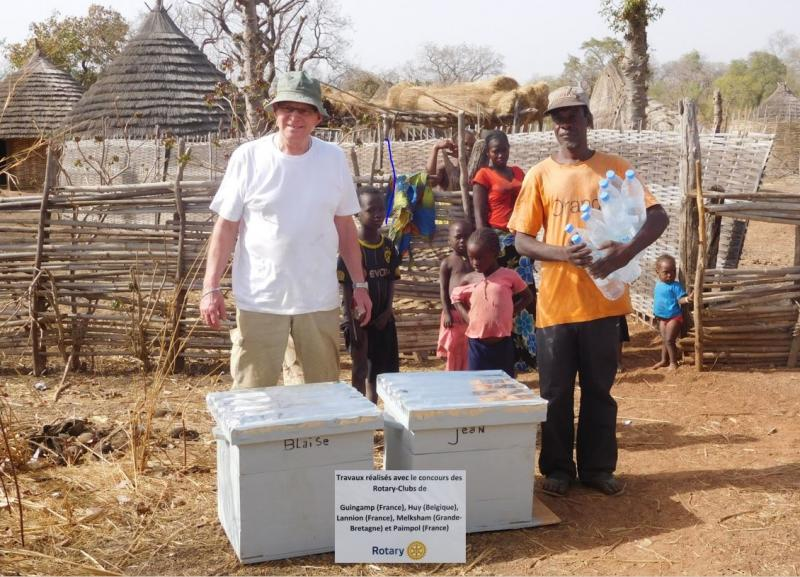Community work in Senegal - Ruches