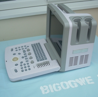 The Bigogwe Project - Scanner1-sm
