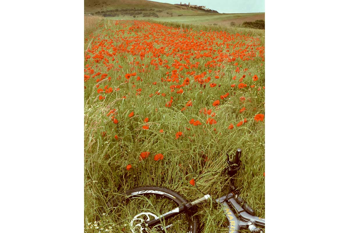 Young Photographers Competition - The Poppy Fields by Josh - Commended