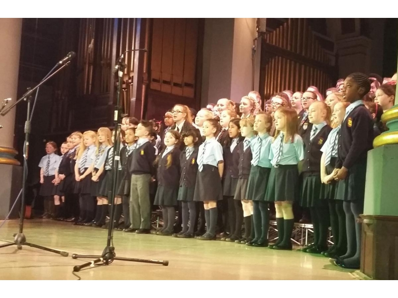 Crocuses in Bloom around the District - St Johns R.C. primary school premiered a song specially written by their music teacher