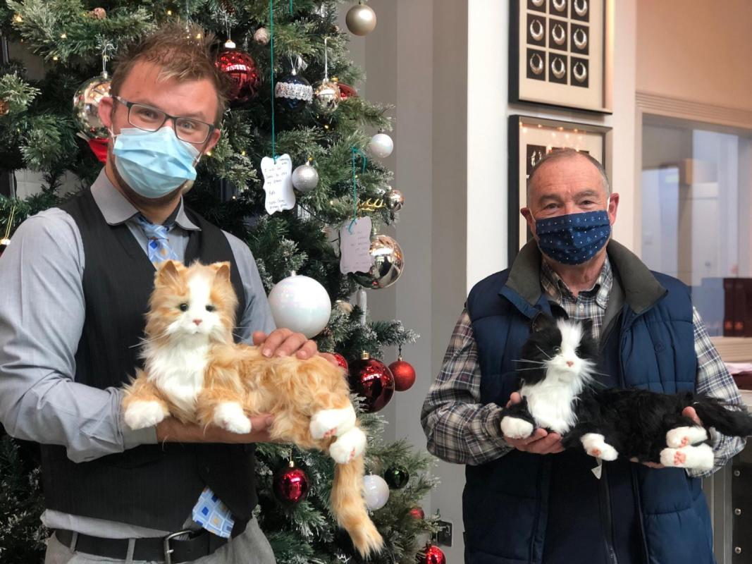 Rotary donates Robotic Companion Cats to Local Care Homes -