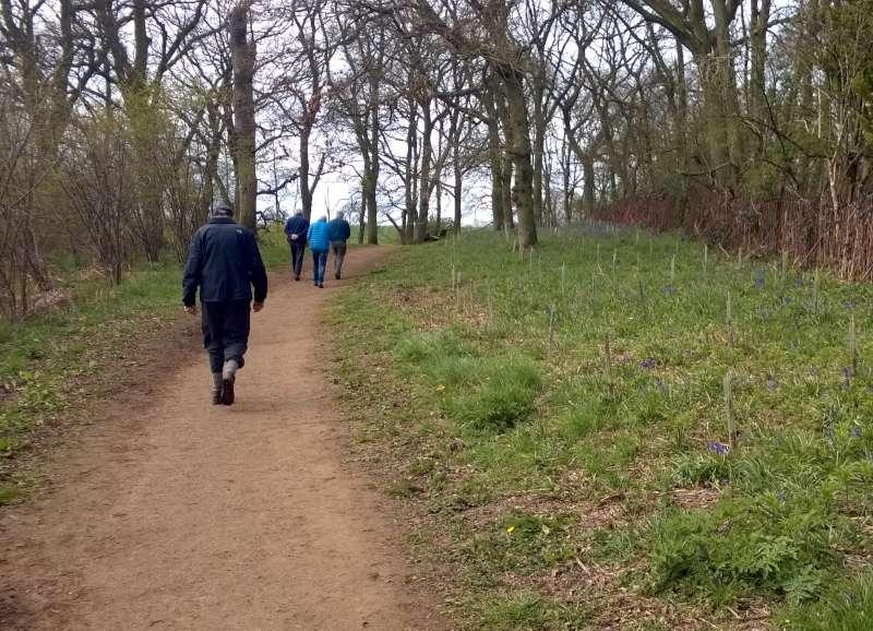 Club Walk from the World's End, Ecton - heading for the bluebells