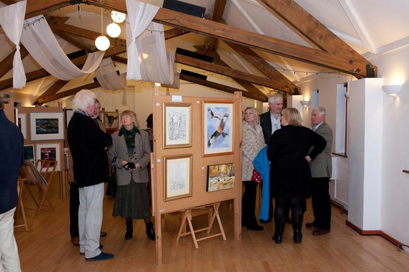 Thame Rotary Art Show 2013 - Art lovers