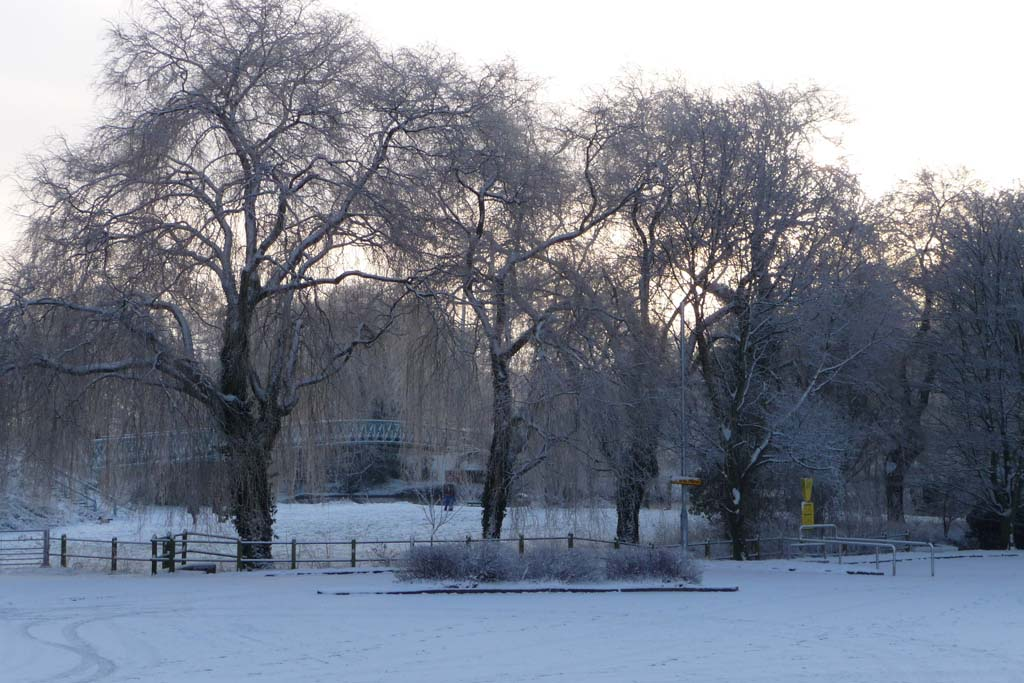 Blandford in the snow -  The Willows