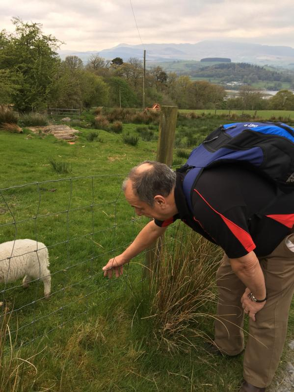 The Bala Charity Walk -