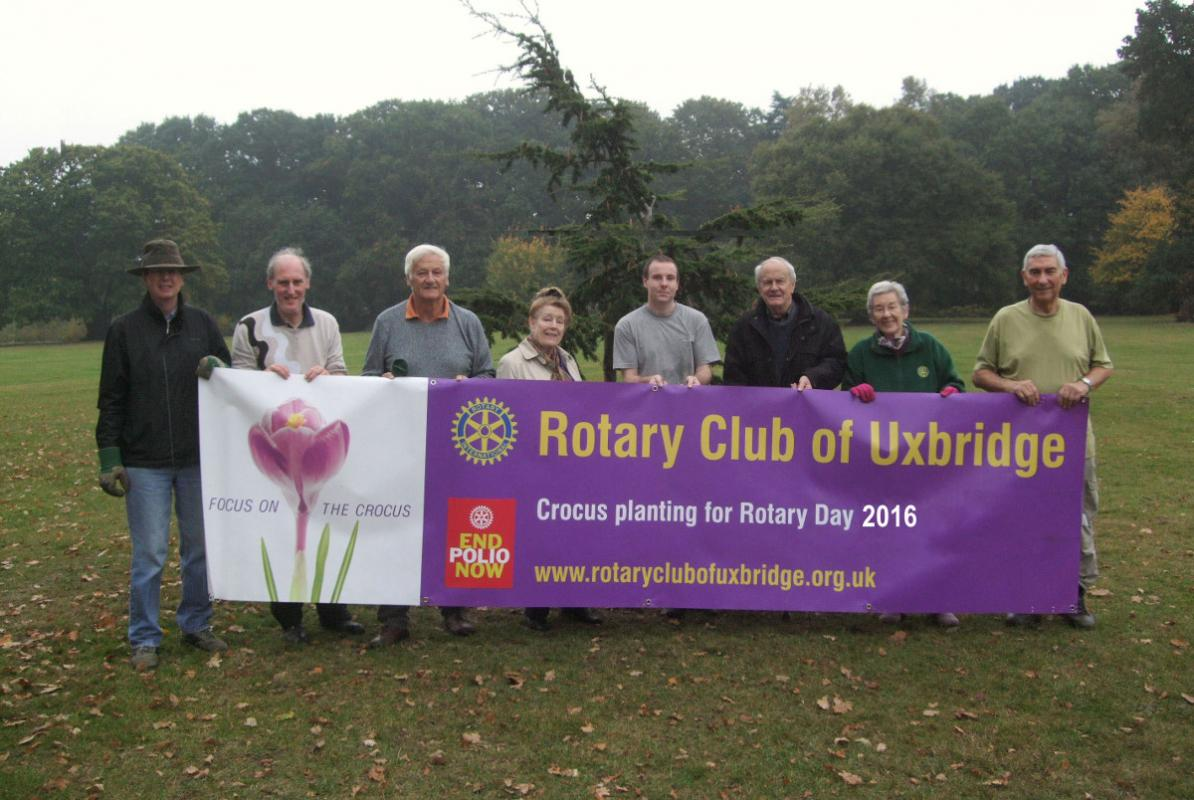 Growing Together to End Polio Now - planting in Fassnidge Park and Court Park