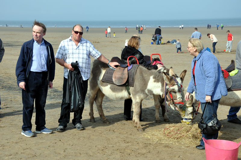 Whitby Weekend - We all love Donkeys