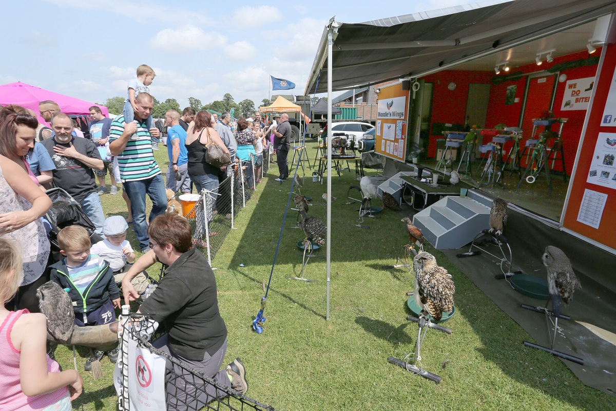 Doncaster Classic Car and Bike Show 2017 - Woodies Wings
