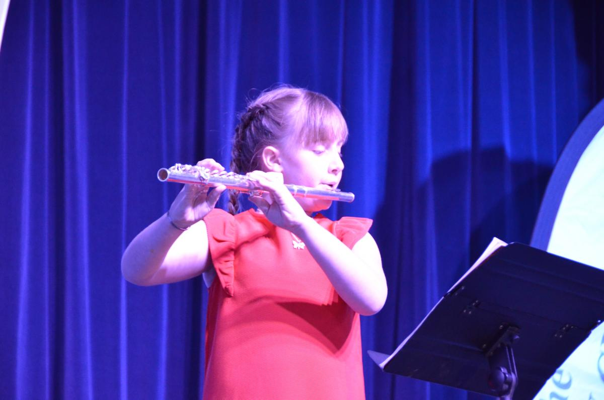 Young Musicians Competition - A solo performer