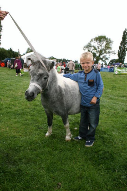 St Asaph country Fayre 2013 - child-pony