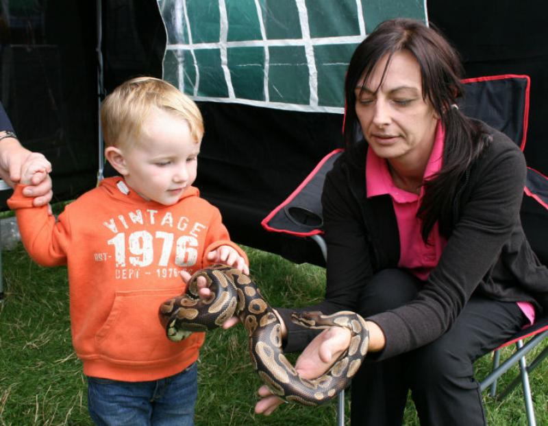 St Asaph country Fayre 2013 - child-snake