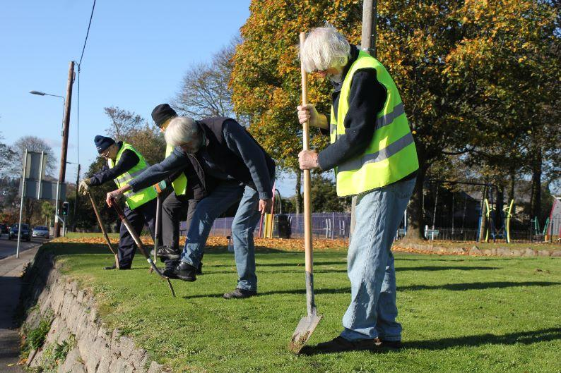Purple4Polio campaign - cutting the turf to plant the corms outside poltair park