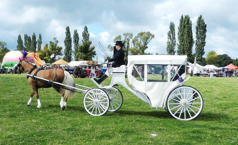 Thousands brave the elements for the Rotary St Asaph Country Fayre - fayre002
