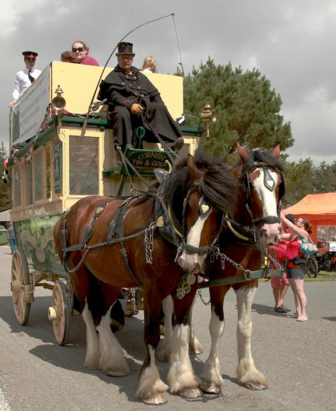 WHEELS 2014 REPORT & PICTURES - Lizard Shire Stallions Horse Bus