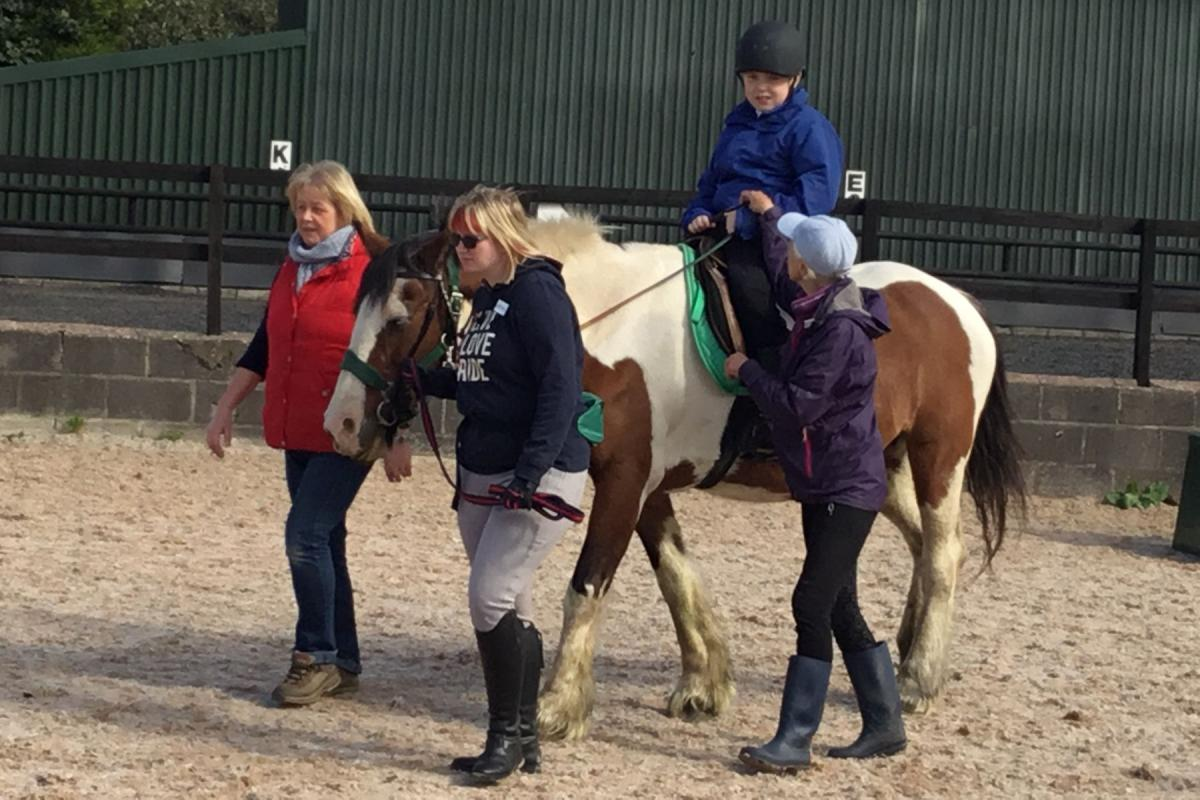 4D Immersive Sensory Room for Walton Hall Academy - horseriding 0325