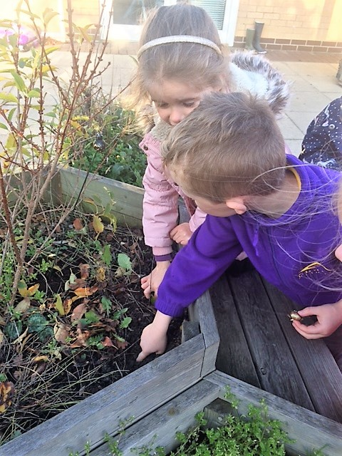 Wickford Goes Planting! -