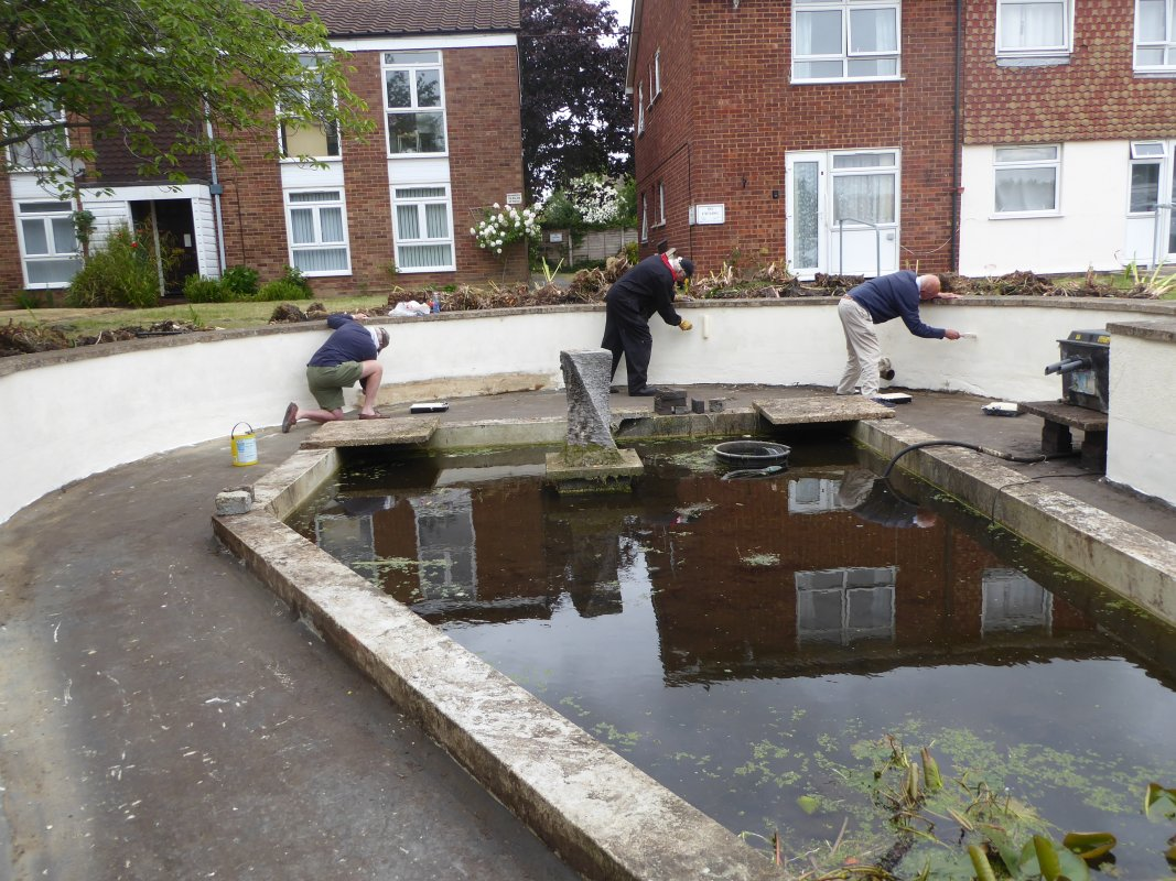 Ingleton House Pond Project  - June 2020 - paint trio 01
