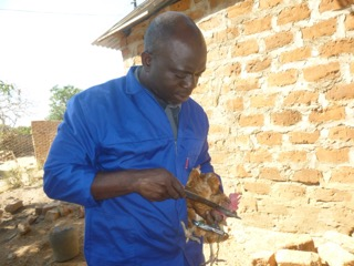 Our Zambia Project - Update - Health inspection for one of the chickens.