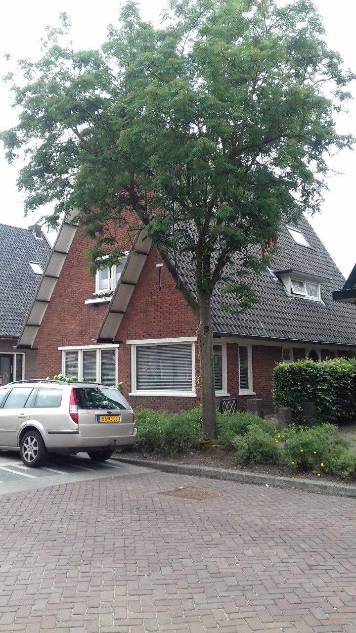 Visit to Apeldoorn in Holland - thumbnail 20180610 093416