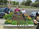 GENERAL - Worthing Rotary Club take responsibility for planting and maintaining some flower beds along the seafront
