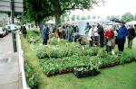 HANDS Fair May 2006 -