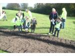 2017 Purple 4 Polio - End Polio Now - Bishop Auckland Rotary Club Crocus Planting 2017 08