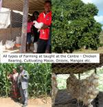 The Chikuku Youth Centre Project -  Zimbabwe - Maize were in season and onions were being dried. There were plenty of fruit trees.