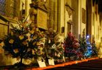 Norwich Christmas Tree Festival - Dec 2014 - Display1