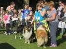 Dog Walkers Parade - Dogs and their owners assembling for the parade