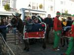 Reindeer Parade Photos -  Pets Corner and the donkey and Elves were particularly busy today