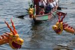 Rotary Dragon Boat Challenge 2017 - Dragon Boats-1457