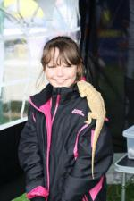 St Asaph country Fayre 2013 - Girlizard