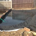 11th Sept 2015 - today is pond day ! -