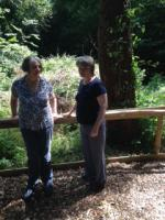 Stroud Court Woodland Walk - Residents using the Woodland Walkway