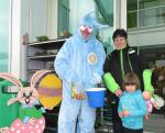 Easter bunnies collection -