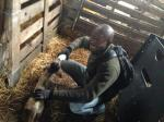 Denis Bannah from Sierra Leone visits Scottish farm - IMG 2047 (640x480)