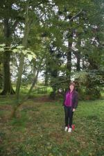 Westonbirt Walk - Anne had a very poignant moment on finding the tree dedicated to her father