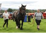 ​RECORD CROWDS FLOCK TO ST ASAPH ROTARY FAYRE -