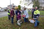 Planting Purple for Polio at Rhuddlan Library  -