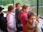 Chernobyl Kids visit to Blair Drummond Safari Park - P6242029 (640x480)