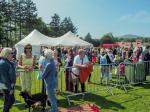 Penicuik in the Park 26th May 2018 - The bar area